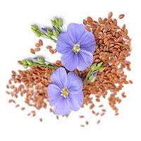 Диета на семенах льна для похудения